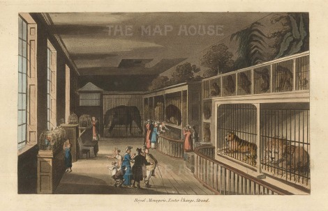 Menagerie at Exeter Change, Strand. Papworth, 1816. [LDNp10277]